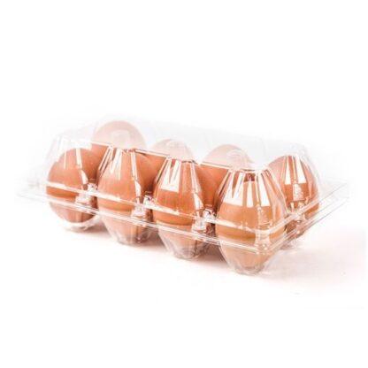 Яйця курячі Відбірні (С0) 10 шт лоток, пак